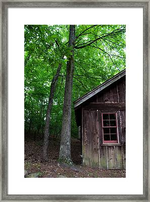 Cabin Framed Print by Shelby  Young