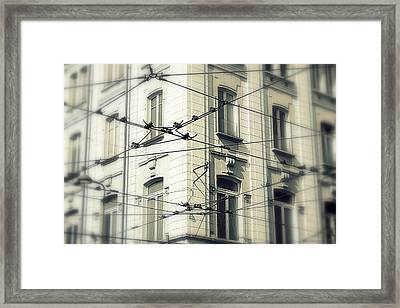 Cables Framed Print by Valentino Visentini