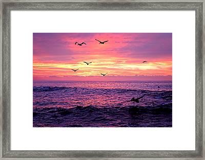 Cabo San Lucas Sunrise Framed Print by Marcia Colelli