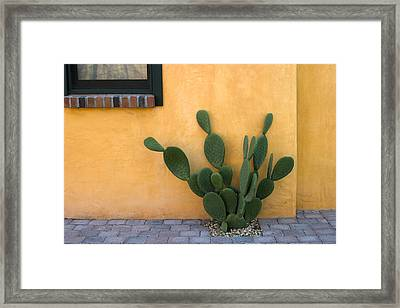 Cactus And Yellow Wall Framed Print by Carol Leigh