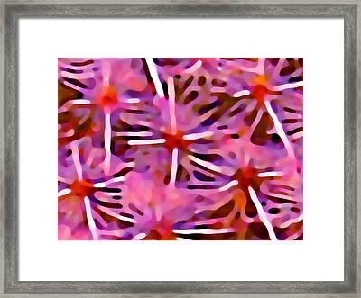 Cactus Pattern 3 Pink Framed Print by Amy Vangsgard