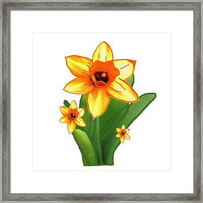 Cactus Plant Green And Three Flowers All The Smile By Navinjoshi Framed Print by Navin Joshi