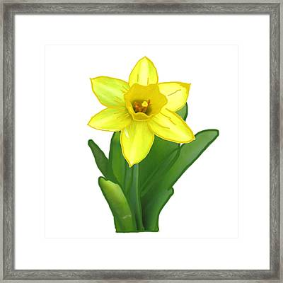 Cactus Plant Green And Yellow Elegant Flower Created By  Navinjoshi Framed Print by Navin Joshi