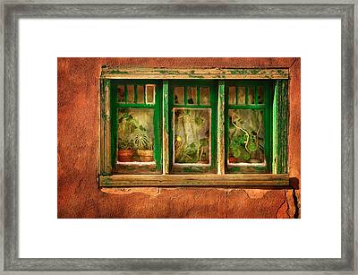 Cactus Window Framed Print by Keith Berr
