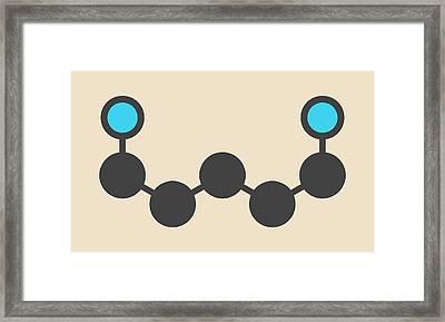 Cadaverine Foul Smelling Molecule Framed Print by Molekuul