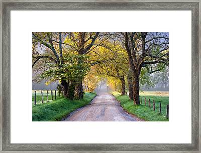 Cades Cove Great Smoky Mountains National Park - Sparks Lane Framed Print by Dave Allen