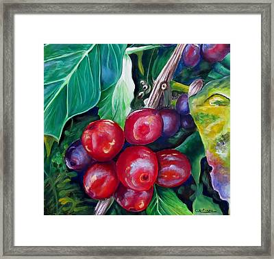 Cafe Costa Rica Framed Print by Carol Allen Anfinsen