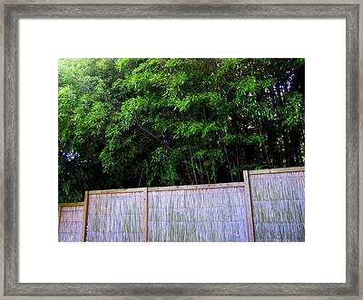 Caged By Their Own Framed Print by Peter LaPlaca