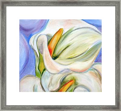 Cala Lily Framed Print by Debi Starr