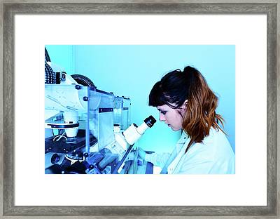 Calcium-imaging Neuron Microscopy Framed Print by Mcs