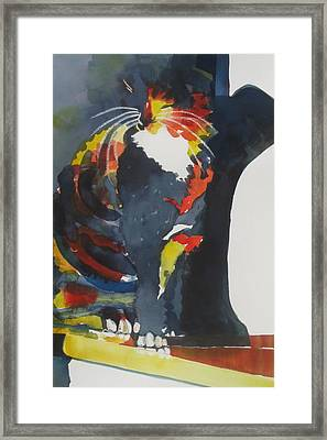 Calico Suncatcher Framed Print by Chere Force