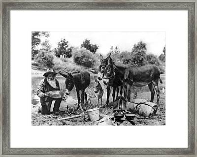 California Gold Miner Framed Print by Underwood Archives