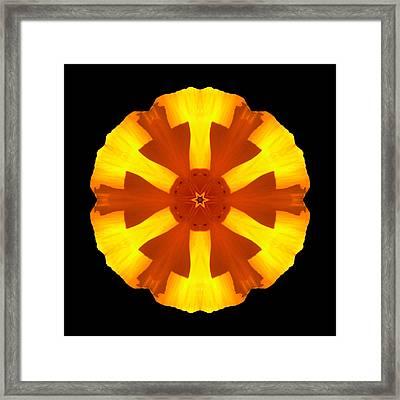 California Poppy Flower Mandala Framed Print by David J Bookbinder