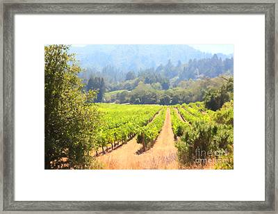 California Vineyard Wine Country 5d24515 Framed Print by Wingsdomain Art and Photography