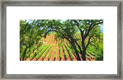 California Vineyard Wine Country 5d24519 Long Framed Print by Wingsdomain Art and Photography