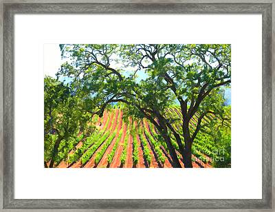California Vineyard Wine Country 5d24519 Framed Print by Wingsdomain Art and Photography