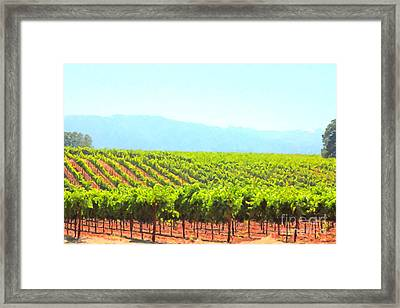 California Vineyard Wine Country 5d24623 Framed Print by Wingsdomain Art and Photography