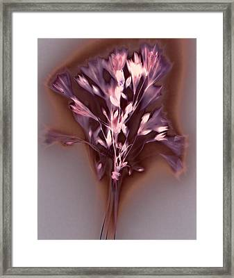 Californian Bluebells Bouquet Framed Print by Susan Leake
