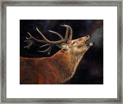Call Of The Wild Framed Print by David Stribbling