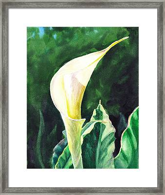 Calla Lily Framed Print by Irina Sztukowski
