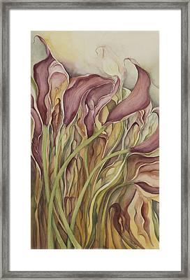 Calla Lily Framed Print by Lynne Bolwell