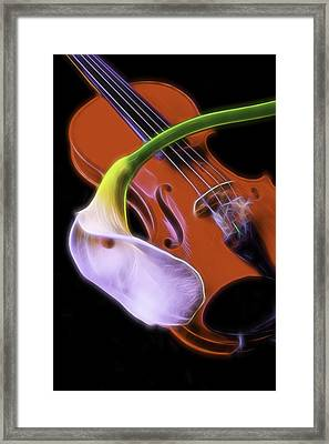 Calla Lily With Violin Framed Print by Garry Gay