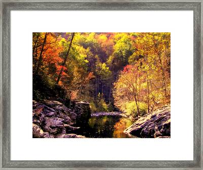 Calling Me Home Framed Print by Karen Wiles