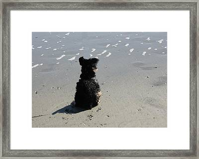Calm Wave Framed Print by Static Studios