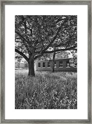 Camp 30 Number 4 Framed Print by Steve Nelson