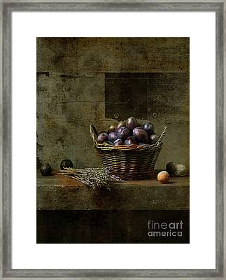 Campagnard - Rustic Still Life - S03at01 Framed Print by Variance Collections