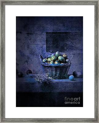 Campagnard - Rustic Still Life - S04ct01 Framed Print by Variance Collections