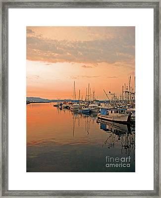 Campbell River Marina Framed Print by Nancy Harrison