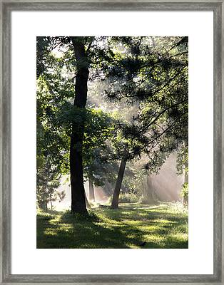 Campgrounds Framed Print by Barbara Smith