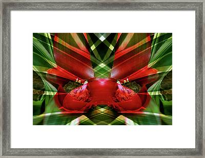 Canada, Victoria Framed Print by Jaynes Gallery
