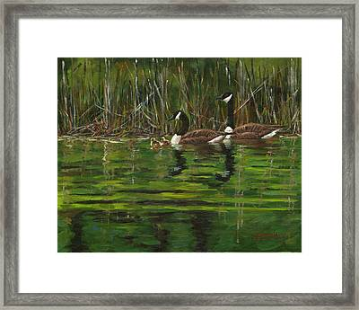 Canadian Geese Framed Print by Grant Lounsbury
