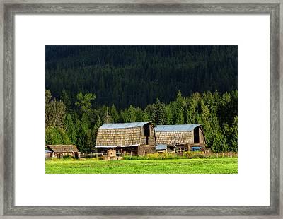Canadian Twins Framed Print by Kathleen Bishop