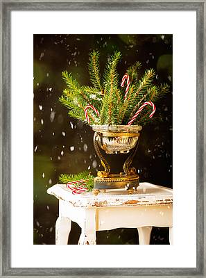 Candy Cane Decoration Framed Print by Amanda And Christopher Elwell