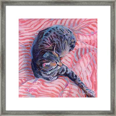Candy Cane Framed Print by Kimberly Santini