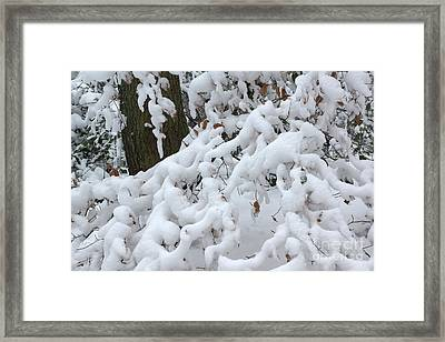 Candy Floss Snow Framed Print by David Birchall