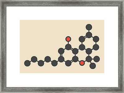 Cannabis Drug Molecule Framed Print by Molekuul
