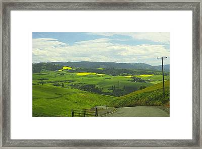 Canola Country Road Framed Print by Anne Mott