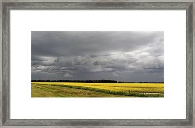 Canola Field Storm Coming, Leduc Framed Print by Bernard Dupuis