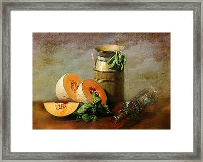 Cantaloupe Framed Print by Diana Angstadt