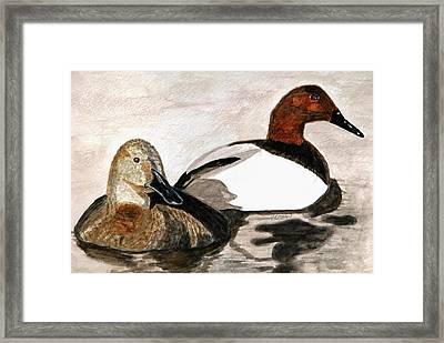 Canvasback Couple Framed Print by Angela Davies