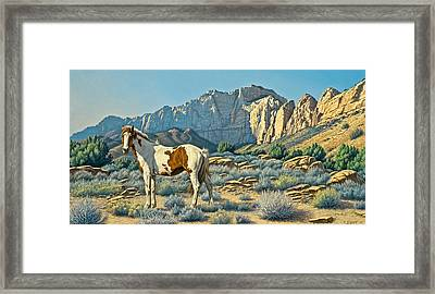 Canyon Country Paints Framed Print by Paul Krapf