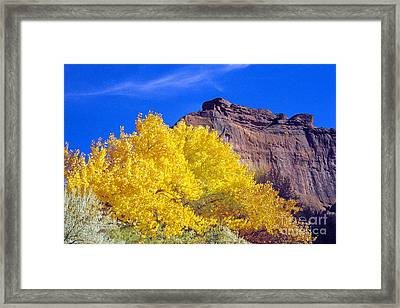 Canyon De Chelly Autumn    Framed Print by Douglas Taylor
