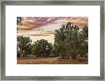 Canyon De Chelly Campground Navajo Nation Framed Print by Bob and Nadine Johnston