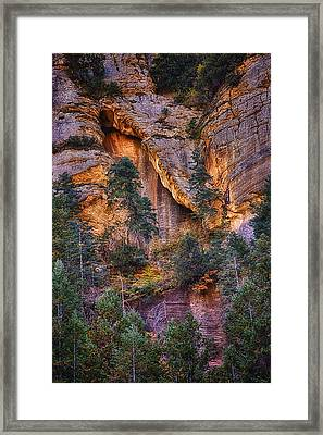 Canyon Light Framed Print by Priscilla Burgers
