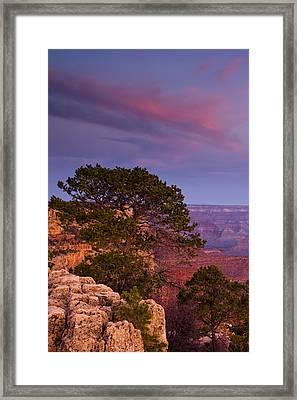 Canyon Morning Framed Print by Andrew Soundarajan