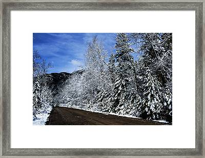 Canyon Road Color Framed Print by Jessie Mazur